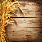 Wheat Ears on the Wooden Table  Sheaf of Wheat over Wood Background