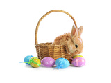 Fluffy Foxy Rabbit in Basket with Easter Eggs