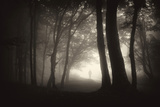 Thick Fog in a Dark Forest with Silhouette