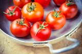 Rustic Tomatoes in the Skillet with Vintage Purple Toning