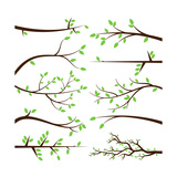 Collection of Tree Branch Silhouettes