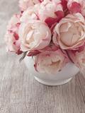 Pink Roses on Wooden Desk