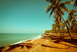 Beautiful Sunny Day at Tropical Beach with Palm Trees  Ocean Landscape in Vintage Style  India