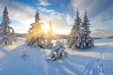 Frosty Morning in the Mountains  Panorama of Winter Mountains  Ukraine  Carpathians