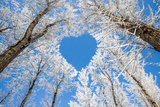 Winter Landscape Branches Form a Heart-Shaped Pattern