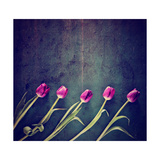 Tulips on a Wooden Board