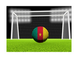 Soccer Cameroon