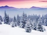 Fantastic Evening Winter Landscape Papier Photo par Leonid Tit