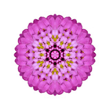 Pink Kaleidoscopic Flower Mandala