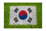 Flag of Korea on Grass