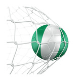 Nigerian Soccer Ball in a Net