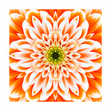 Orange Concentric Flower Center: Mandala Kaleidoscopic Design