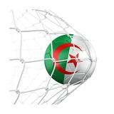 Algerian Soccer Ball in a Net