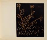 LC - Plante aux toritos Reproduction pour collectionneurs par Pablo Picasso
