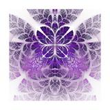 Fabulous Fractal Pattern in Purple