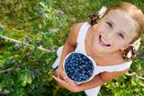 Blueberries  Summer  Child - Lovely Girl with Fresh Blueberries in the Garden