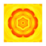 Yellow Concentric Flower Center: Mandala Kaleidoscopic Design