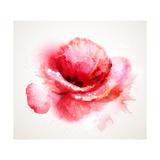 The Flowering Red Poppy Reproduction d'art par Artant