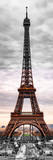 Eiffel Tower  Paris  France - Black and White and Spot Color Photography
