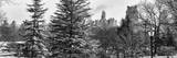 Panoramic View of Central Park with a Squirrel running around on the Snow