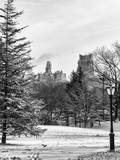 View of Central Park with a Squirrel running around on the Snow