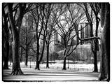 Winter Snow in Central Park View