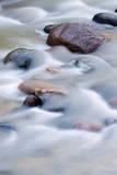 Boulders in Escalante River  Grand Staircase-Escalante NM  Utah  USA