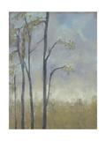 Tree-Lined Wheat Grass II