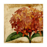 Vibrant Floral III