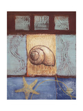 Aquamarine Snail