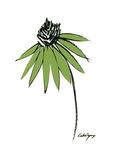 Graphic Cone Flower I
