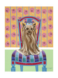 Crown Princess Yorkie