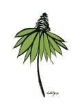 Graphic Cone Flower II