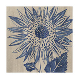 Indigo Sunflower Reproduction d'art par Chariklia Zarris
