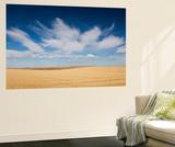 Prairie Landscape  Murdo  South Dakota  USA