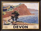 English Devon  c1950
