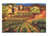 Garden in Vinci