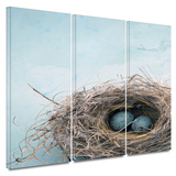Blue Nest 3 piece gallery-wrapped canvas