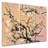 3-Piece Interpretation in Eggshell Almond Blossom 3 piece gallery-wrapped canvas