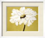 White Flower on Ochre