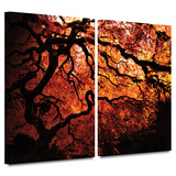 Fire Breather: Japanese Tree 2 piece gallery-wrapped canvas
