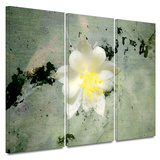 Urban Attitude 3 piece gallery-wrapped canvas