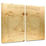 Vitruvian Man 2 piece gallery-wrapped canvas