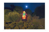 Plastic Santa with Reeds and Moon