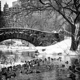 The Gapstow Bridge of Central Park in Winter  Manhattan in New York City