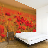 Field of Poppies Wall Decal