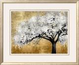 Silver Blossoms