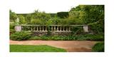 Chicago Botanic Garden Scene