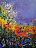 Wild Flowers 454120