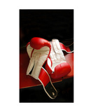 Two Martial Arts Boxing Gloves On Gym Bench